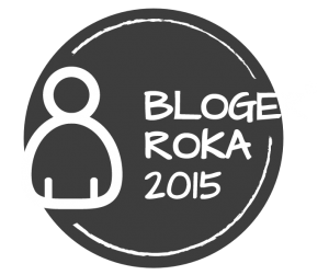 blogueur-année-2015
